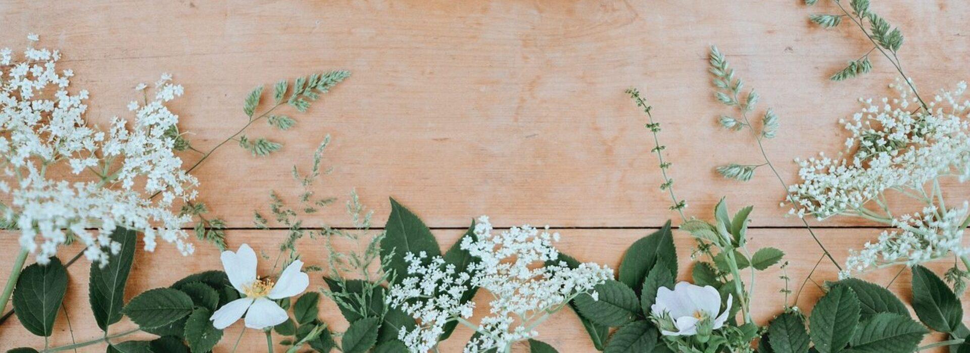 Holistische schoonheidssalon voor natuurlijke huidverbetering
